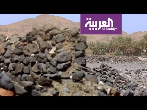 فلسطين اليوم - شاهد عيد اليحيى يروي قصة عشار الحمير في خيبر