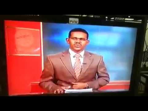 فلسطين اليوم - مذيع سوداني يفاجئ المشاهدين في نشرة الأخبار