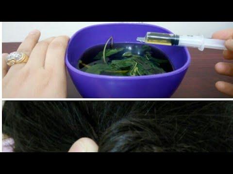 فلسطين اليوم - شاهد وصفة سحرية باستخدام الملوخية لتطويل الشعر