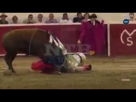 ثور يرفع مصارعه كالدمية ويصيبه بين ساقيه
