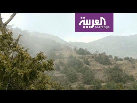 شاهد زيارة إلى غابة رغدان في الباحة السعودية