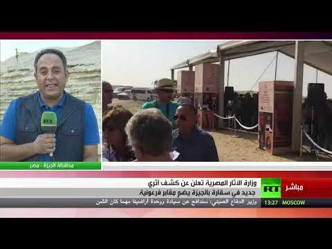 شاهد كشف أثري جديد في منطقة سقارة في محافظة الجيزة