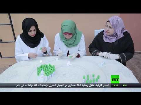 نبتة السكر مشروع طموح بديل للسكر الطبيعي في غزّة