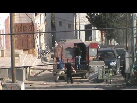 اعتداء مستوطنين على ممتلكات المواطنين في الخليل