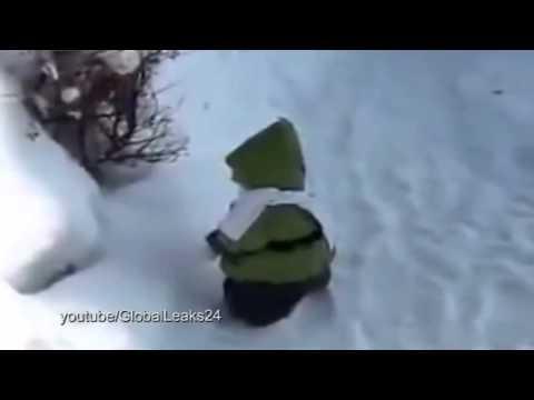 قرد يمشى في الثلج للمرة الأولى