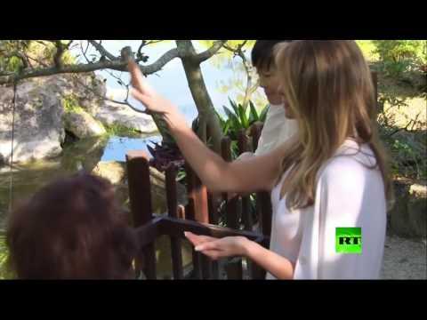 العرب اليوم - بالفيديو  ميلانيا ترامب تطعم الأسماك في فلوريدا
