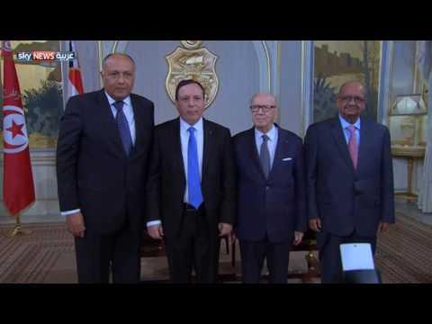 العرب اليوم - بالفيديو مبادرة سياسية جديدة لإنهاء الصراع في ليبيا