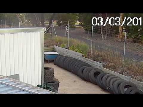 فلسطين اليوم - بالفيديو راكب دراجة ينفّذ قفزة سيارة قاتلة