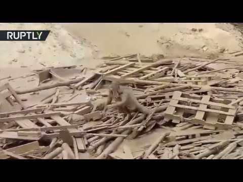 فلسطين اليوم - شاهد نجاة امرأة من الموت بأعجوبة في البيرو