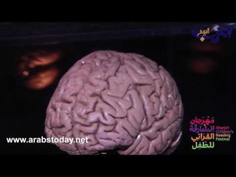 فلسطين اليوم - شاهد جولة مذهلة عبر الدماغ في مهرجان الشارقة