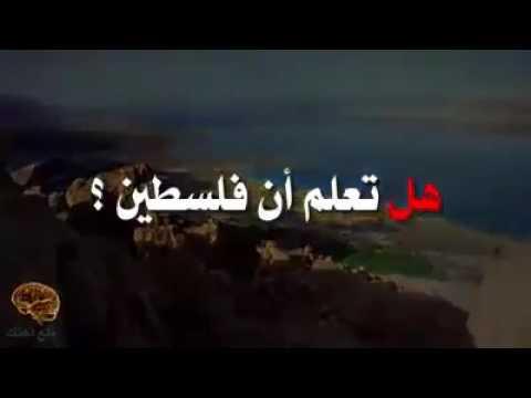 فلسطين اليوم - بالفيديو  معلومات خطيرة عن فلسطين لم تسمع عنها من قبل