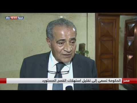 فلسطين اليوم - شاهد الحكومة تدرس خفض حصة الفرد من الخبز المدعم في مصر