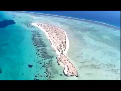 فلسطين اليوم - 50 جزيرة في مشروع البحر الأحمر وسط الطبيعة