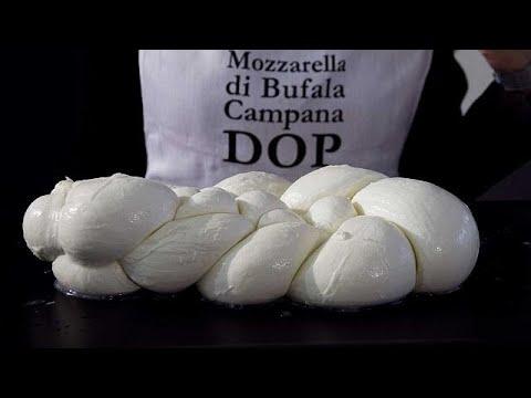 فلسطين اليوم - شاهد تربع الموزريلا الحلال على عرش سوق الأجبان الإيطالية