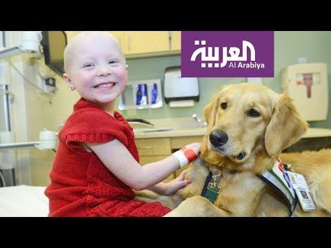 فلسطين اليوم - تقنية رائدة لعلاج مرض اللوكيميا المنتشر بكثافة بين الأطفال