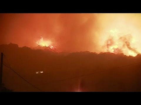 فلسطين اليوم - حريقان في جزيرة كورسيكا يتسببان في إجلاء 700 شخص