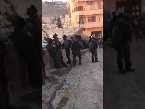 فلسطين اليوم - شاهد الاحتلال الإسرائيلي يهدم بناية سكنية وتجارية في العيسوية