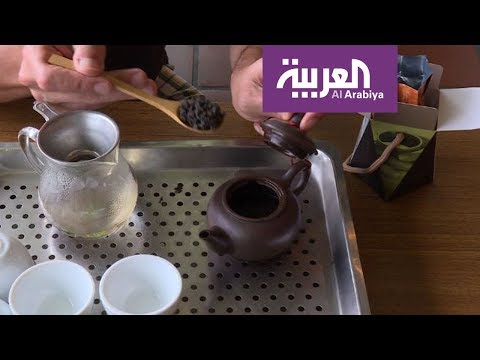فلسطين اليوم - شاهد جولة في حقول شاي تايوان ستذهلك بجمالها