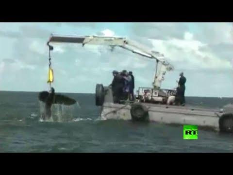 فلسطين اليوم - شاهد لحظة سحب النسر النازي من حطام سفينة حربية ألمانية
