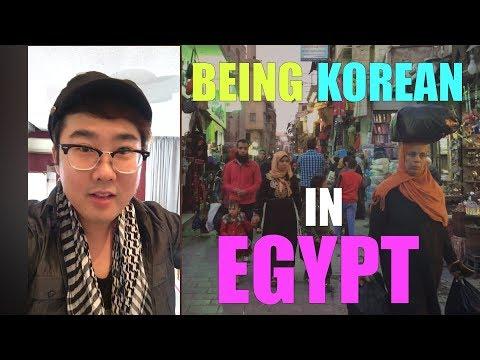 فلسطين اليوم - شاهد شاب كوري يكشف انطباعه عن زيارة مصر