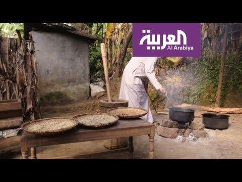 فلسطين اليوم - بالفيديو القهوة عربية لم يعرفها الأتراك إلا في القرن الـ16