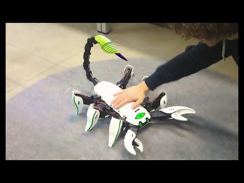 فلسطين اليوم - أروع 8 روبوتات على شكل حشرات