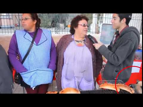 فلسطين اليوم - شاهد كلب يسرق فطيرة بطريقة مضحكة