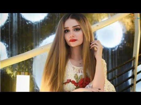 فلسطين اليوم - بالفيديو  ملكة جمال العراق فيان السليماني في إسطنبول