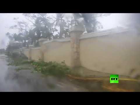 فلسطين اليوم - شاهد إعصار ماريا يقلع الأشجار من جذورها