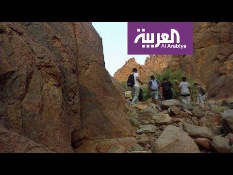فلسطين اليوم - شاهد المشي في الطبيعة الهايكنغ في عروس الشمال السعودي