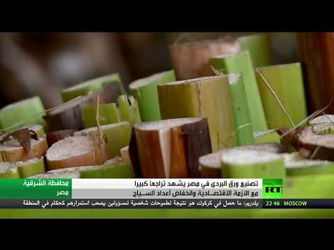 فلسطين اليوم - شاهد صناعة ورق البردي في خطر في مصر
