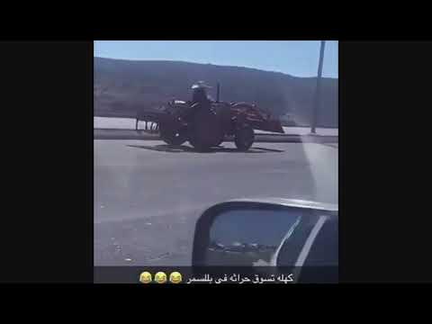 شاهد امرأة عجوز تقود جرارًا زراعيًا بمهارة