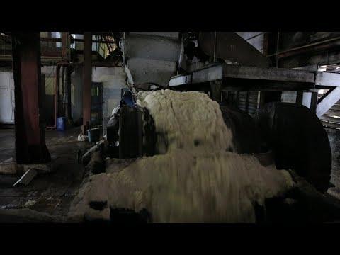 مراحل صناعة السكر في أحد أقدم المصانع الكوبية