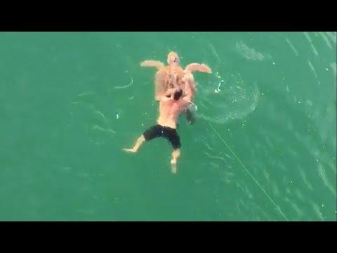 الصياد الشجاع يقفز في المياه لإنقاذه سلحفاة بحرية