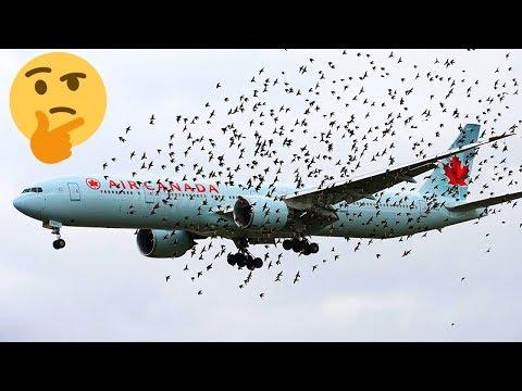 أغرب 10أسئلة عن الطائرات