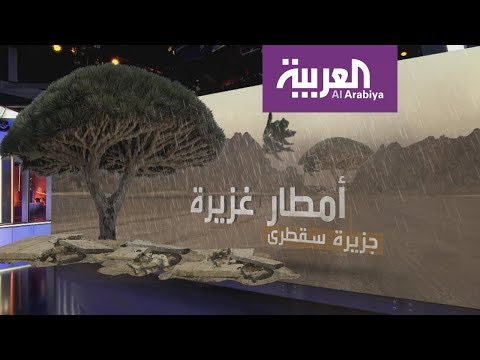 تعرّف على العاصفة التي تكونت في بحر العرب وستتحول إلى إعصار