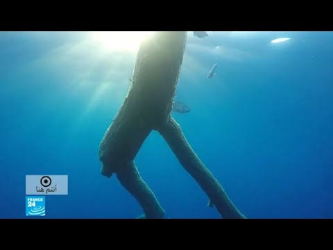 شاهد بحر پيلاغوس بقعة متناثرة في الأبيض المتوسط بحجم بلد بأكمله