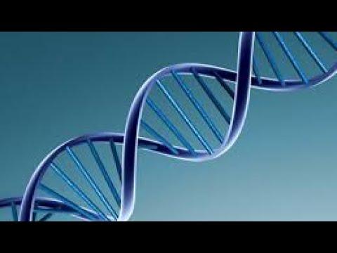 شاهد تكنوفيليا يكشف تفاصيل فحوصات الحمض النووي على الإنترنت