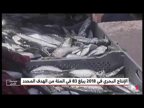 شاهد الإنتاج البحري المغربي في 2018 بلغ 83  من الهدف المحدد أليوتيس 2020