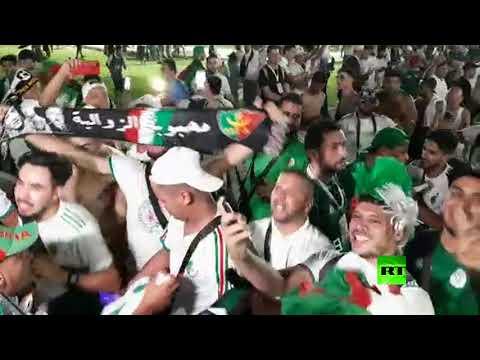 شاهد احتفالات الجزائريين في ملعب السويس بعد الفوز على كوت ديفوار