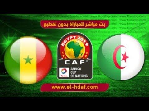 شاهد: بثّ مباشر لمباراة السنغال والجزائر