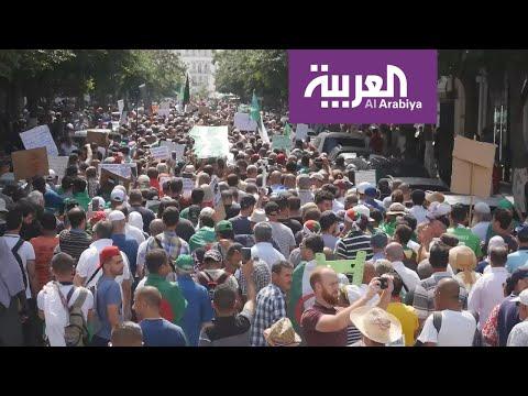 الشارع الجزائري على وشك الإطاحة برئيس الحكومة