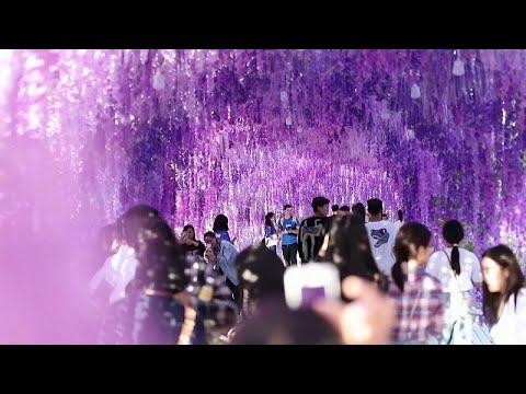 الصينيون ينظمون أنشطة عدة احتفالا بمهرجان منتصف الخريف