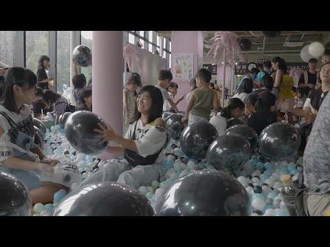 افتتاح منتزه خاص لتذوق التايبوكا في العاصمة اليابانية طوكيو
