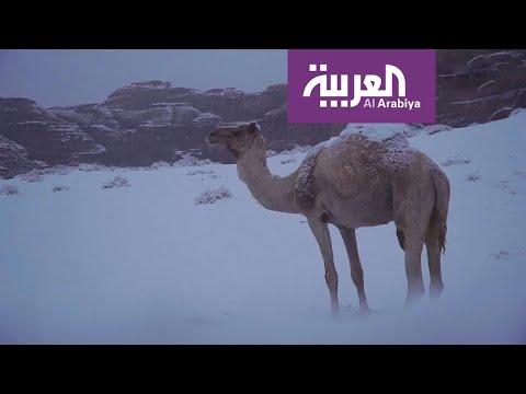 السعودية تحت كتلة باردة وتبوك والجوف تترقبان الثلج
