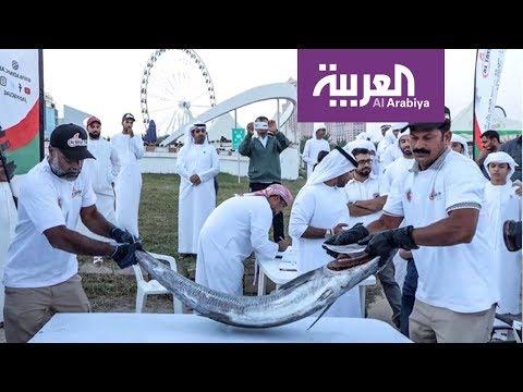 شاهد سمكة كنعد بـ 200 ألف درهم في أبو ظبي