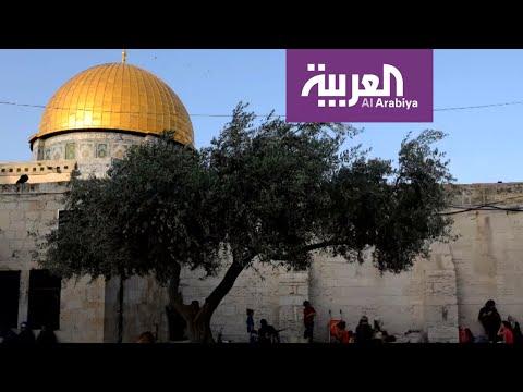 بنود مسربة من خطة الرئيس ترامب للسلام في الشرق الأوسط
