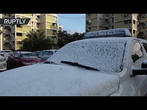 الثلوج تغطي الأشجار والسيارات وأسطح المباني في شوارع بغداد