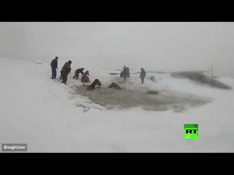 مواطنون روس ينقذون خيولًا سقطت تحت المياه المتجمدة