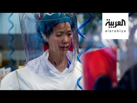 خبيرة الفيروسات الصينية المرأة الوطواط تعود إلى الواجهة في أزمة كورونا